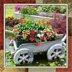 Садовый дизайн (садовые фигуры)